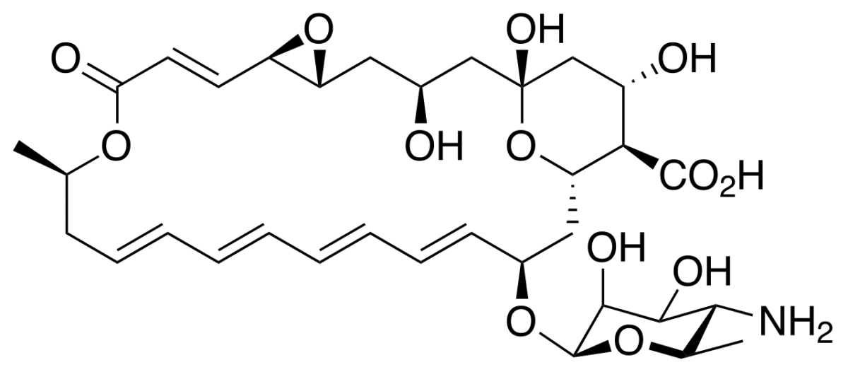 Структурная формула Натамицина C33H47NO13
