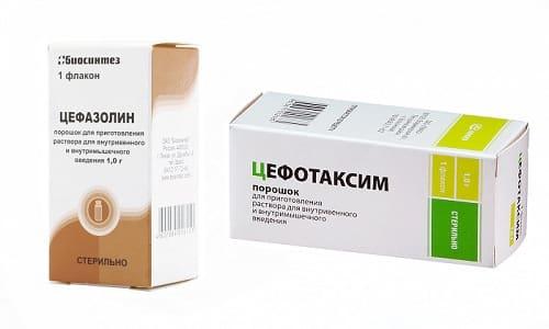 цефотаксим или цефазолин