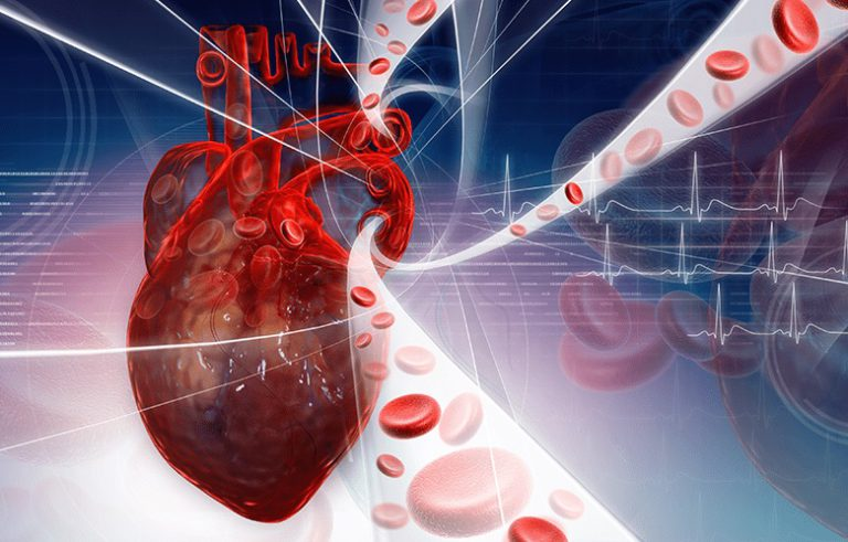 Инфаркт миокарда  — берегите своё сердце!