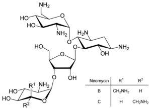 Структурная формула Неомицина C23H46N6O13