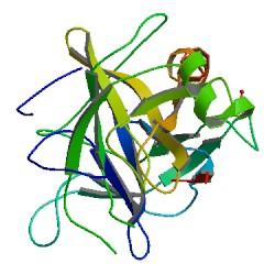 Структура Химотрипсина