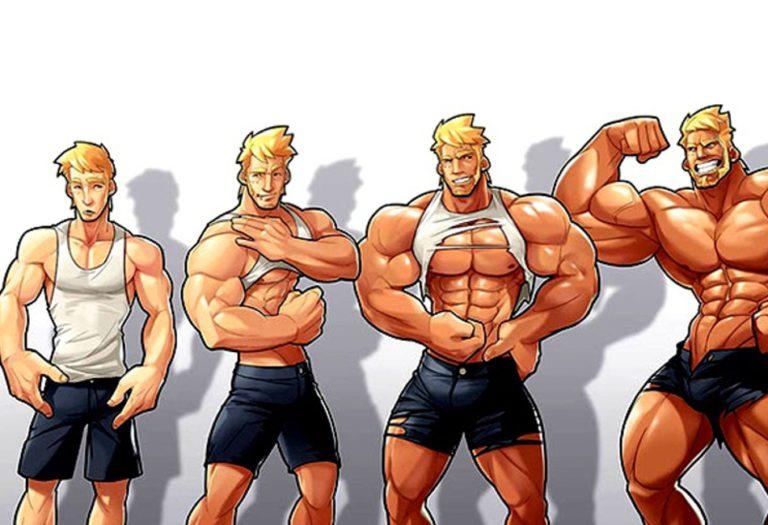Стероиды: классификация, функции, влияние на организм человека, стероидогенез, вред и побочные эффекты
