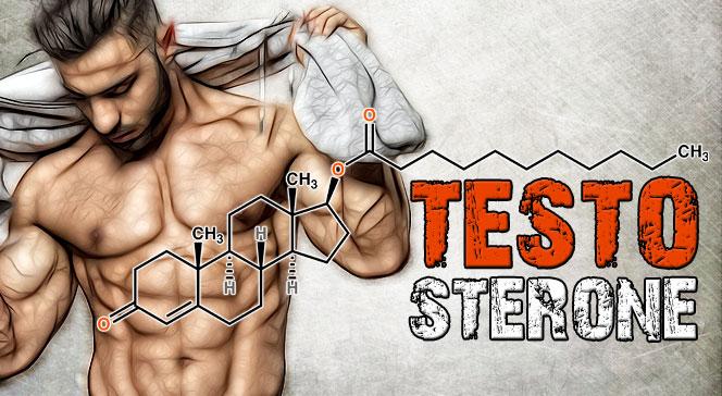 Почему падает тестостерон у мужчин
