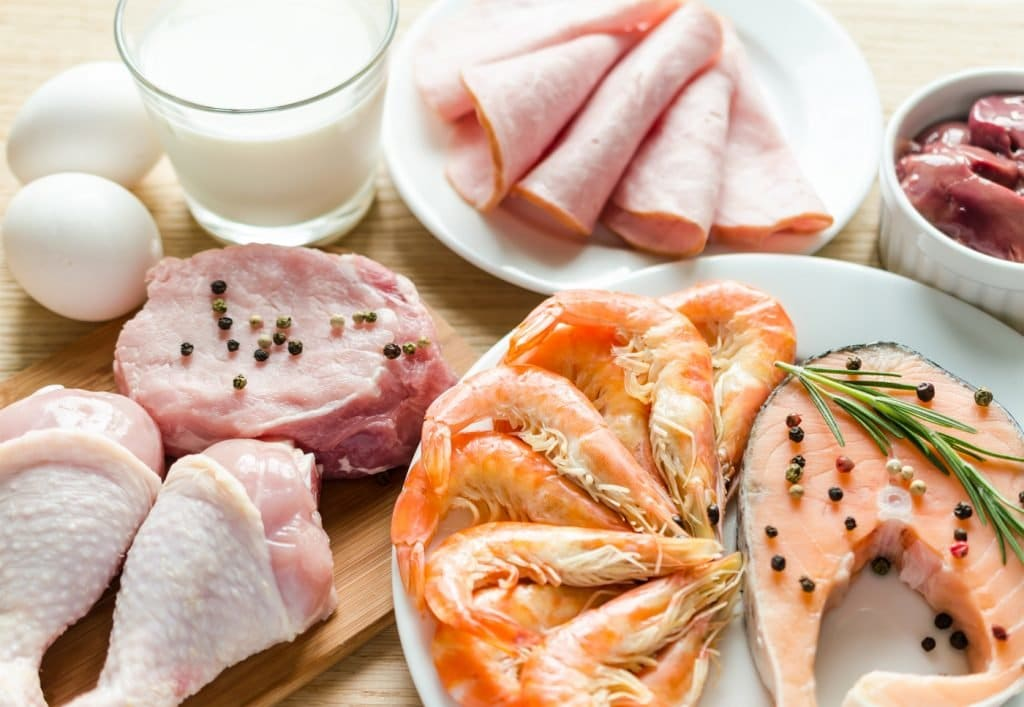 Что есть при белковой диете