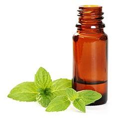 Эфирные масла: свойства, применение, список и сочетания
