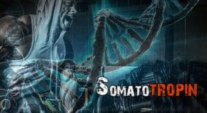 Гормон роста (соматотропин): функции, норма в организме и препараты