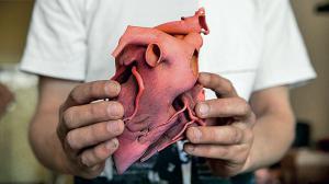 Печать органов на 3D принтере