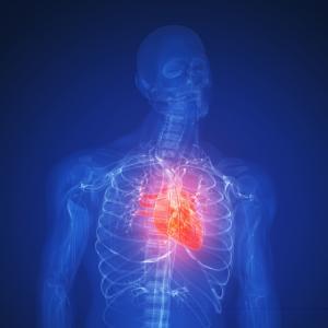 Установки для операций на сердце появятся в Казахстанских клиниках