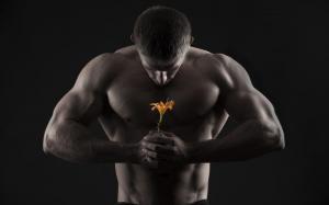 Снижение либидо у мужчин: причины, симптомы и лечение