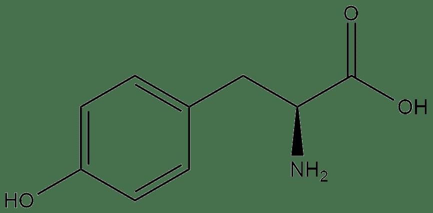 Структурная формула тирозина
