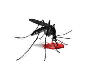 Прививка от малярии RTS-S