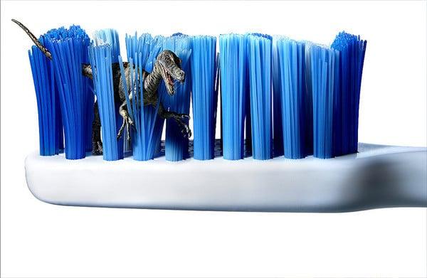 Как часто менять зубную щетку