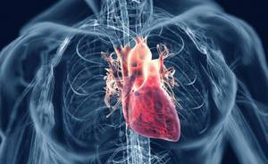 Порок сердца: причины, виды, симптомы, диагностика и лечение
