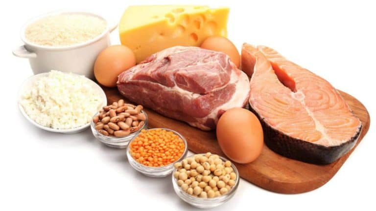 Белковая диета: продукты, польза или вред