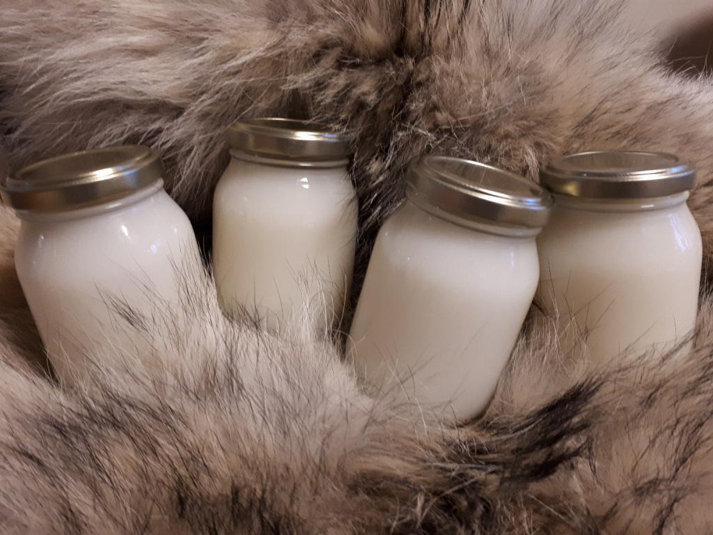 Медвежий жир: применение для детей. Медвежий жир от кашля