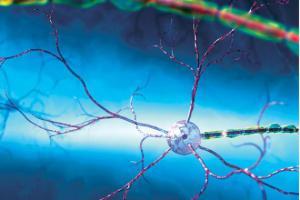 Восстановление нервных клеток