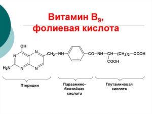 Фолиевая кислота (витамин B9, фолат): для чего нужна, как принимать, суточная норма, в каких продуктах содержится и препараты