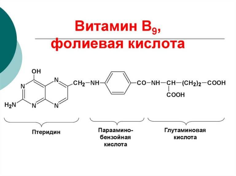 Фолиевая кислота (витамин B9, фолат)