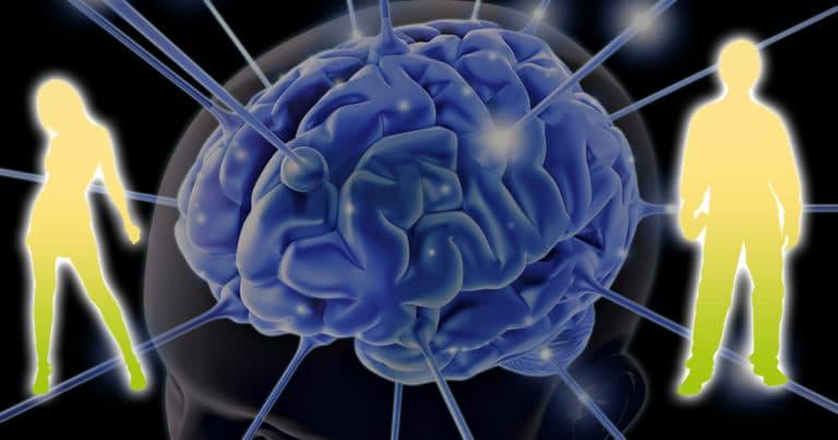 Какого пола мозг