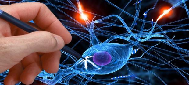 Электроакупунктурная теория: особенности и принципы диагностики