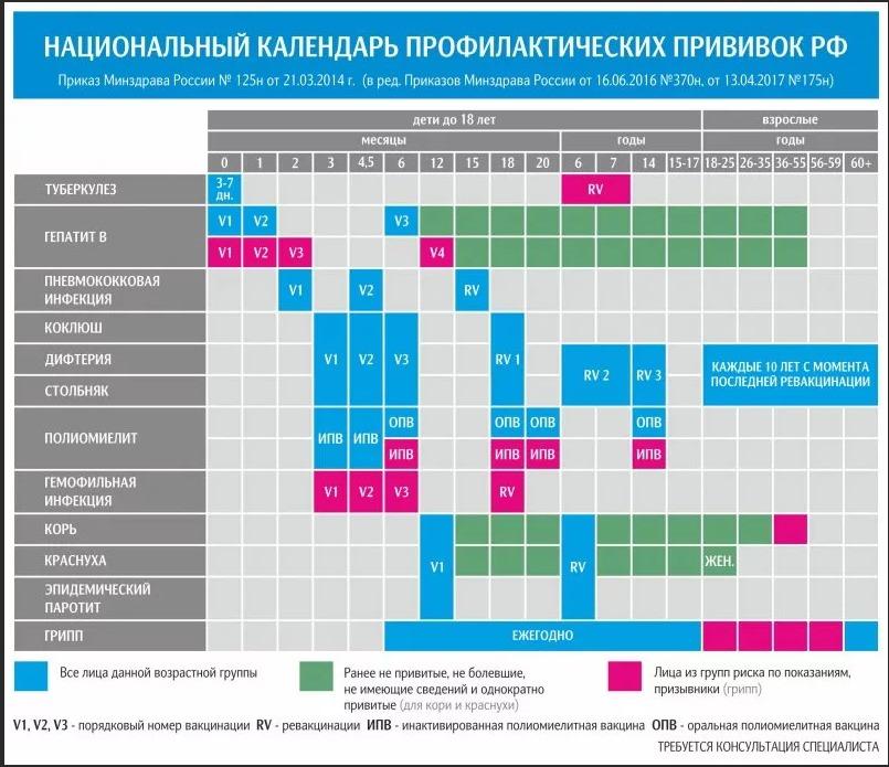 Пример графика прививок в редакции от 2017 г