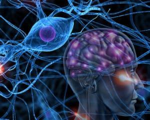Препарат для лечения простаты замедляет процесс болезни Паркинсона