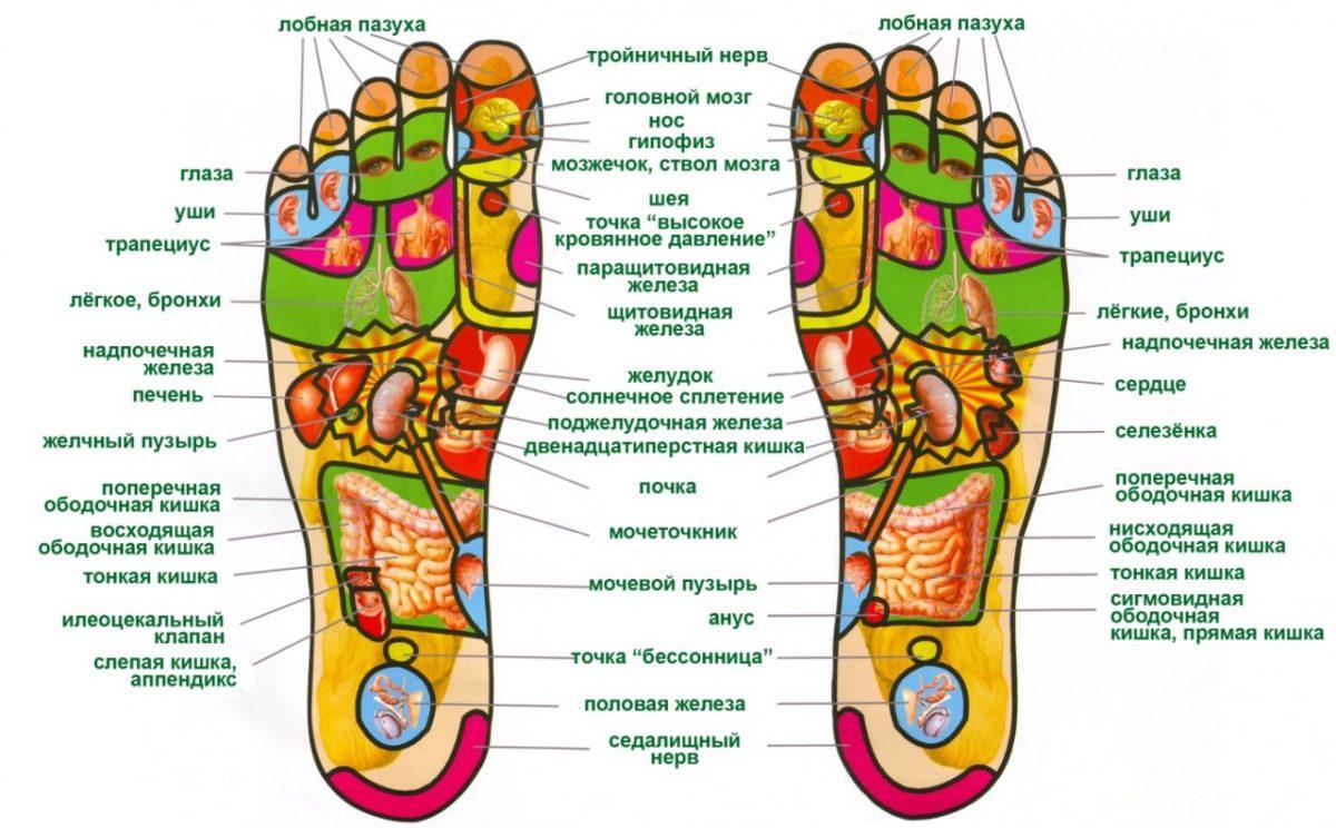 Биологически активные точки ног