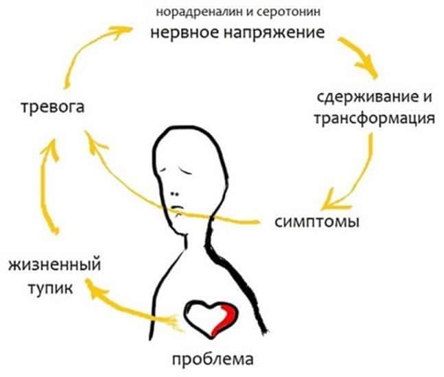 Схема замкнутой цепи нервного срыва