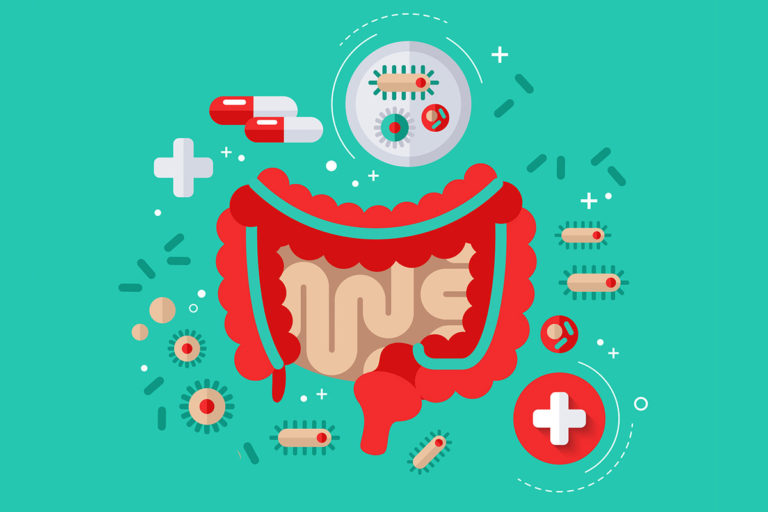 Пробиотики — полезные микроорганизмы для здоровья человека
