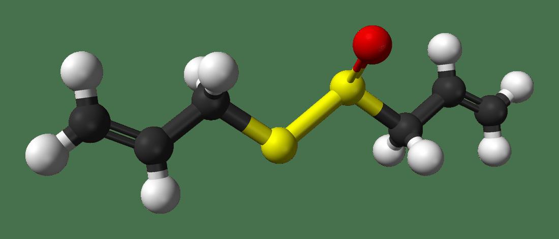 Аллицин - органическое соединение, сульфоксид