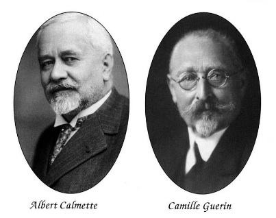 Альбер Кальмет (фр. Leon Charles Albert Calmette) и Жан-Мари Камиль Герен (фр. Jean-Marie Camille Guerin)