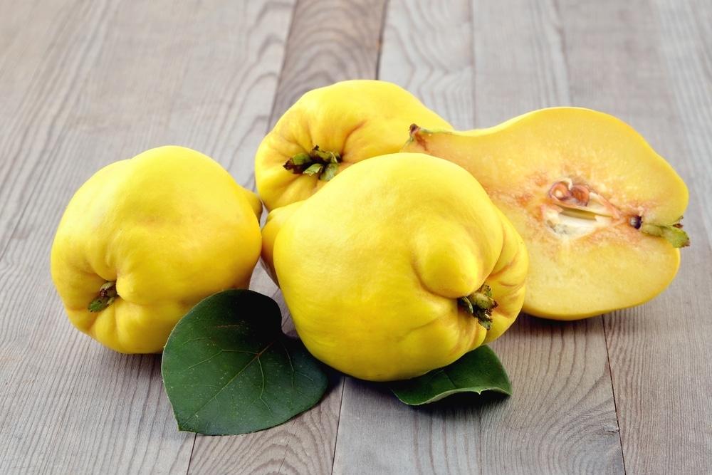 Полезные свойства фрукта айва