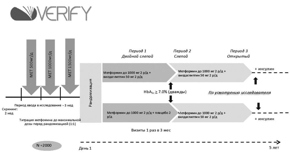 VERIFY - рандомизированное двойное слепое исследование