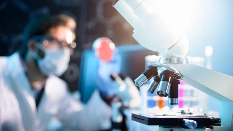 О возможности перехода ко II фазе клинического исследования двойного агониста BI 456906