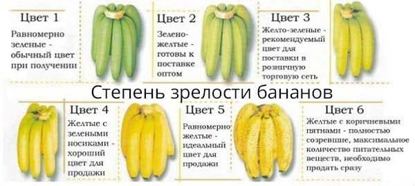 Степень зрелости бананов