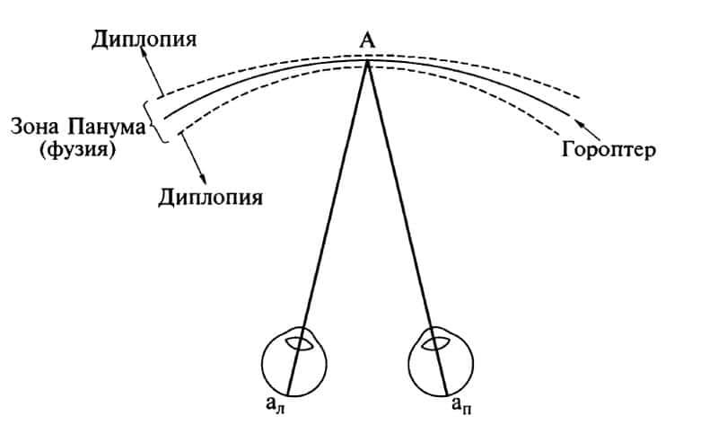 Физиология двоения глаза