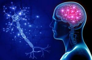 Рассеянный склероз: причины, симптомы, формы и стадии
