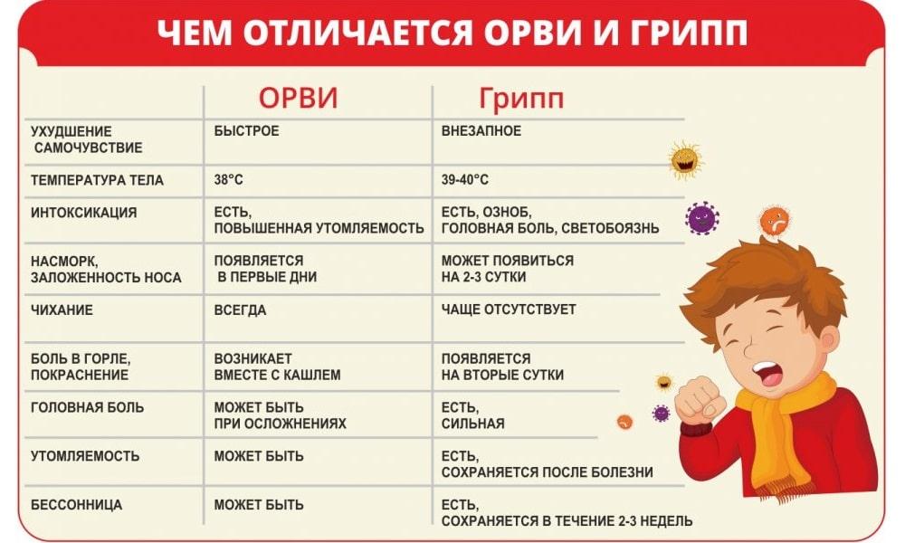 Чем отличается ОРВИ от гриппа