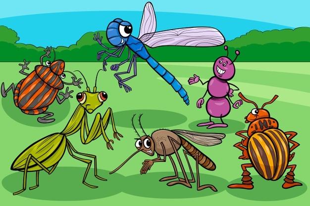 Болезни, принесенные насекомыми