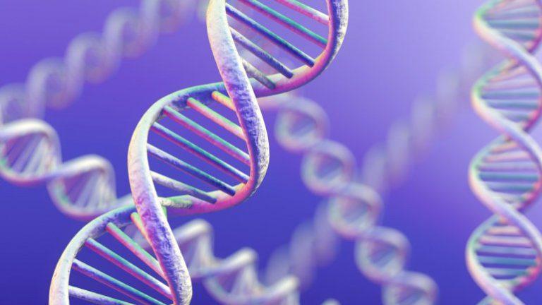 Как медицинская этика смотрит на создание человеческих клонов?