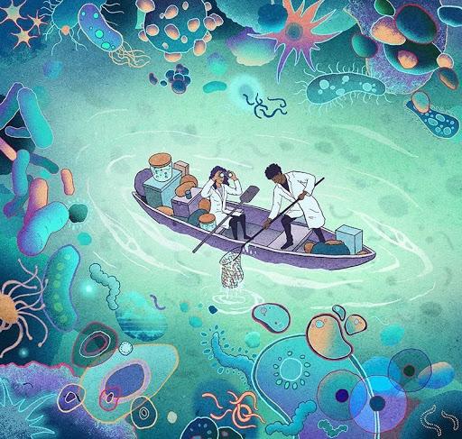 Микробы, живущие в нашем организме
