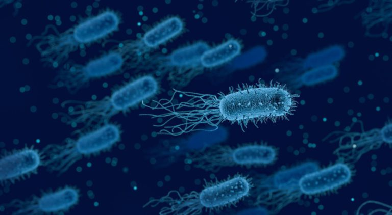 Почему вирусы и бактерии возвращаются?