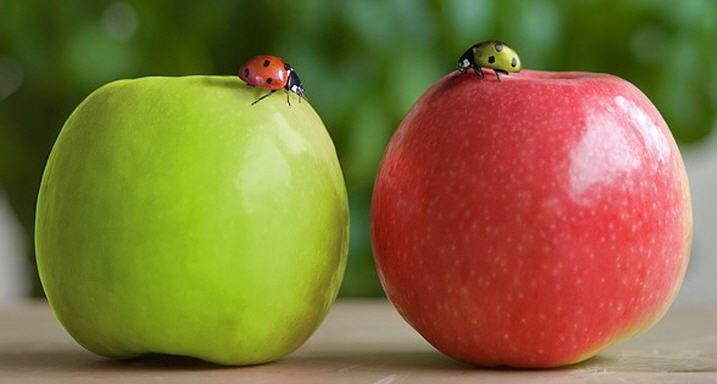 Дальтонизм — красный или зелёный?