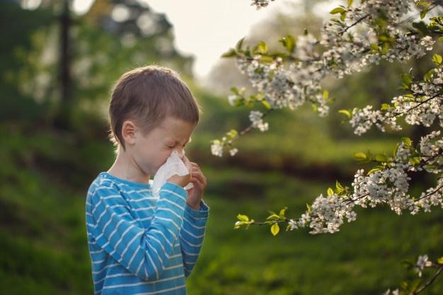 Самые популярные мифы об аллергии
